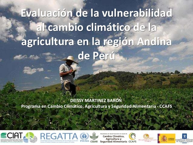 Evaluación de la vulnerabilidad  al cambio climático de la  agricultura en la región Andina  de Perú  DEISSY MARTINEZ BARÓ...