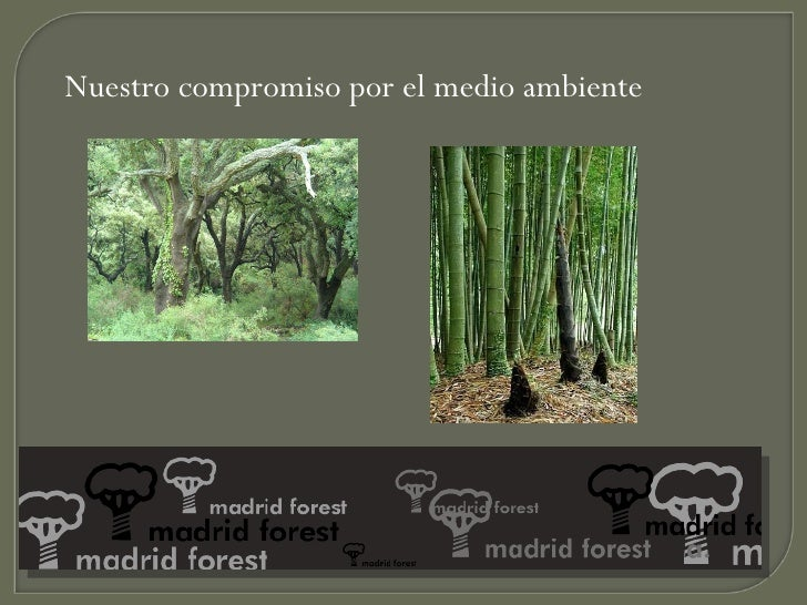 Pergo flooring madrid forest - Madrid forest ...
