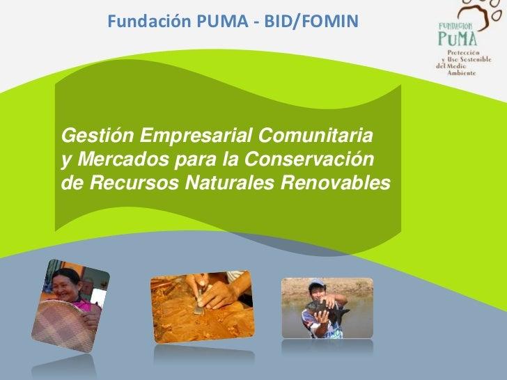 Fundación PUMA - BID/FOMIN <br />Gestión Empresarial Comunitaria <br />y Mercados para la Conservación <br />de Recursos ...