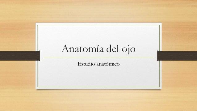 Anatomía del ojo Estudio anatómico