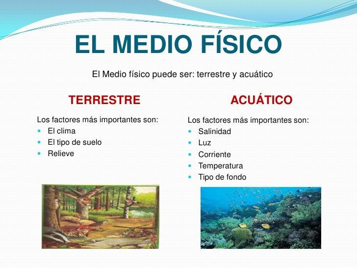 presentaci n de los ecosistemas pdf