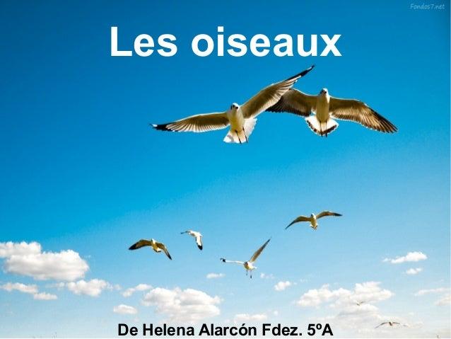 Les oiseauxDe Helena Alarcón Fdez. 5ºA