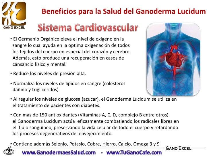 Beneficios del Ganoderma Lucidum en la Salud