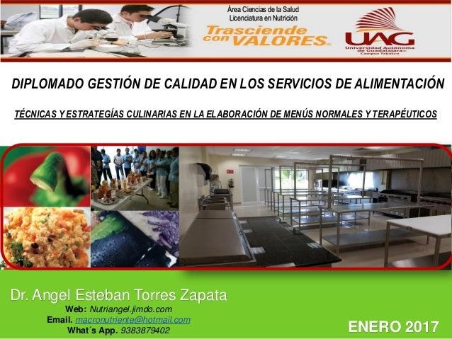 LOGO DIPLOMADO GESTIÓN DE CALIDAD EN LOS SERVICIOS DE ALIMENTACIÓN Dr. Angel Esteban Torres Zapata Web: Nutriangel.jimdo.c...