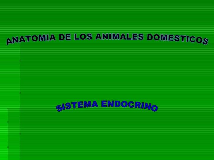ANATOMIA DE LOS ANIMALES DOMESTICOS SISTEMA ENDOCRINO