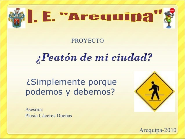 ¿Simplemente porque podemos y debemos? PROYECTO Arequipa-2010 Asesora: Plusia Cáceres Dueñas