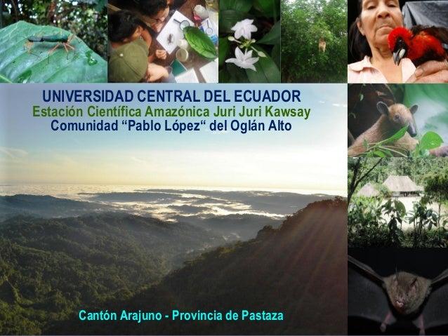 """UNIVERSIDAD CENTRAL DEL ECUADOREstación Científica Amazónica Juri Juri Kawsay   Comunidad """"Pablo López"""" del Oglán Alto    ..."""