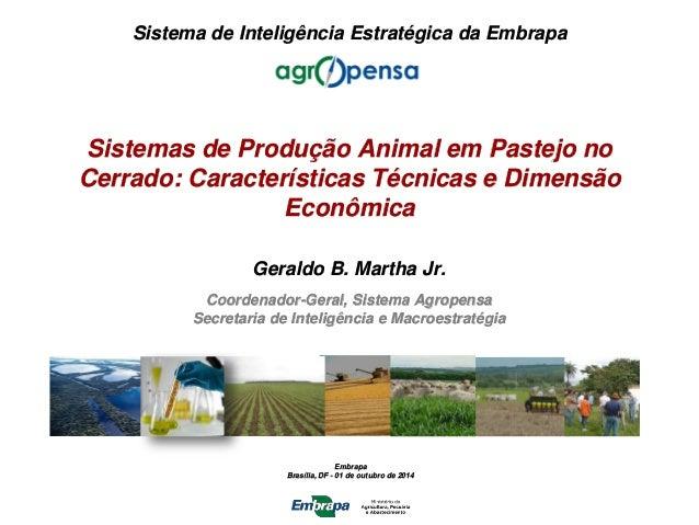 Embrapa Brasília, DF - 01 de outubro de 2014 Sistema de Inteligência Estratégica da Embrapa Geraldo B. Martha Jr. Coordena...