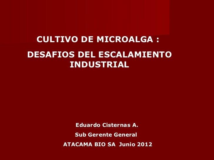 CULTIVO DE MICROALGA :DESAFIOS DEL ESCALAMIENTO       INDUSTRIAL         Eduardo Cisternas A.         Sub Gerente General ...