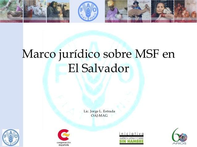 Marco jurídico sobre MSF en El Salvador Lic. Jorge L. Estrada OAJ-MAG