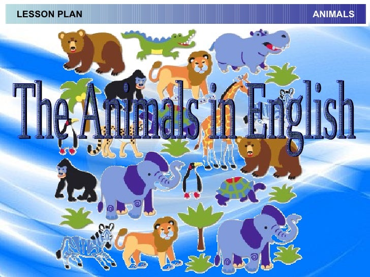 The Animals in English