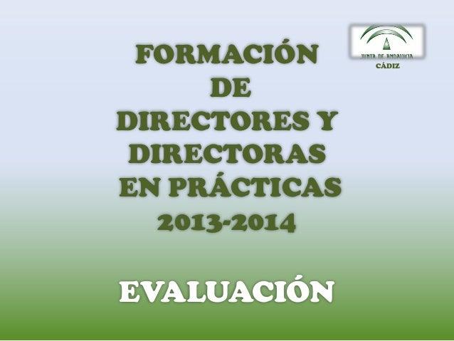 FORMACIÓN DE DIRECTORES Y DIRECTORAS EN PRÁCTICAS 2013-2014 EVALUACIÓN CÁDIZ