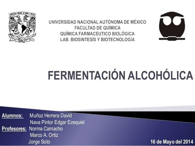 FERMENTACIÓN ALCOHÓLICA Alumnos: Muñoz Herrera David Nava Pintor Edgar Ezequiel Profesores: Norma Camacho Marco A. Ortiz J...