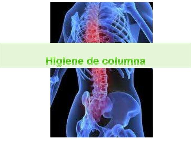 Columna vertebral  Compuesta por 33 vértebras  Dividida en 5 zonas