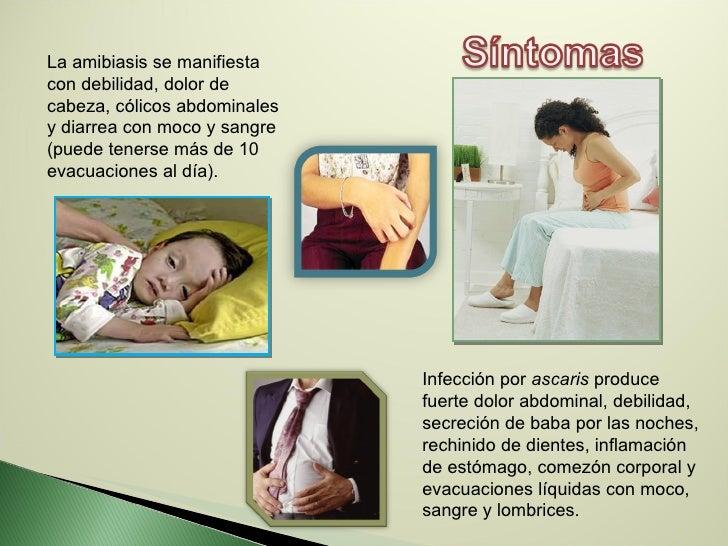 La amibiasis se manifiesta con debilidad, dolor de cabeza, cólicos abdominales y diarrea con moco y sangre (puede tenerse ...