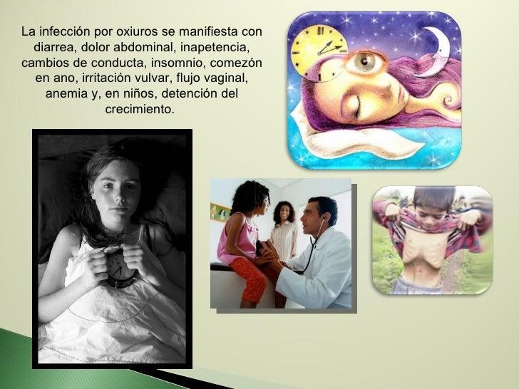 La infección por oxiuros se manifiesta con diarrea, dolor abdominal, inapetencia, cambios de conducta, insomnio, comezón e...