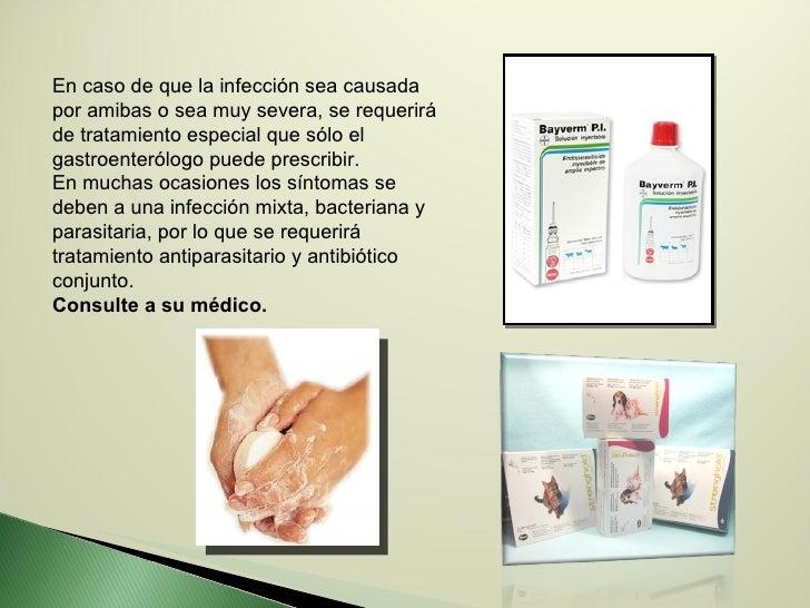 En caso de que la infección sea causada por amibas o sea muy severa, se requerirá de tratamiento especial que sólo el gast...