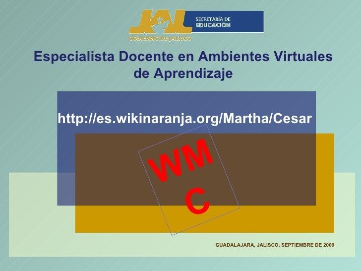 Especialista Docente en Ambientes Virtuales de Aprendizaje http://es.wikinaranja.org/Martha/Cesar GUADALAJARA, JALISCO, SE...