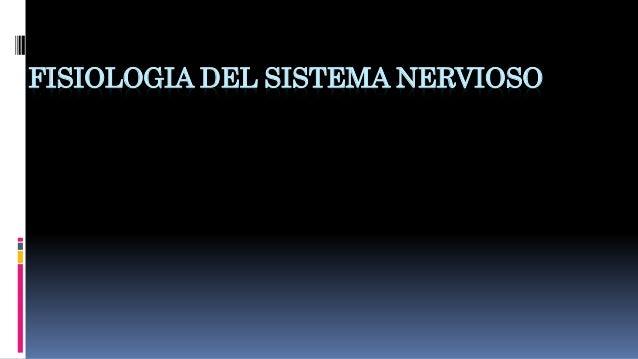 Fisiología: anatomía y fisiología del sistema nervioso, sinapsis, rec…