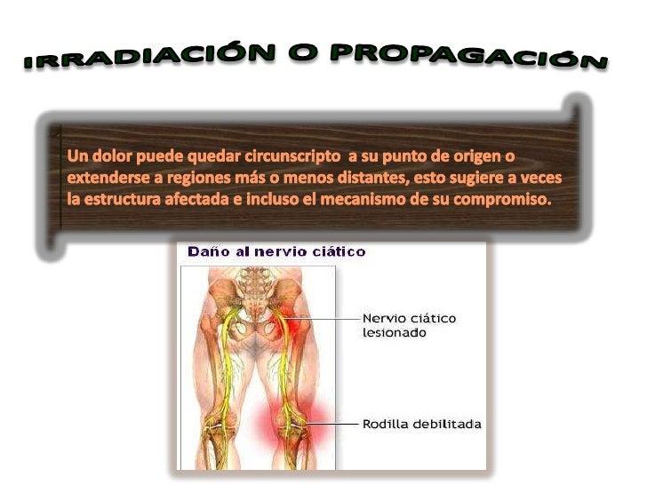 • Cognoscitivo: se refiere a los mecanismos de  percepción• Afectivo: forma como el dolor altera el  bienestar o el sufrim...