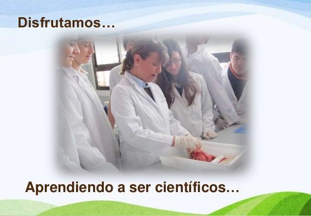 Disfrutamos…Aprendiendo a ser científicos…