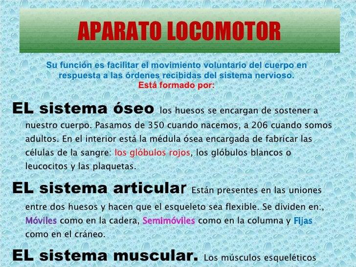 APARATO LOCOMOTOR <ul><li>EL sistema óseo   los huesos se encargan de sostener a nuestro cuerpo. Pasamos de 350 cuando nac...