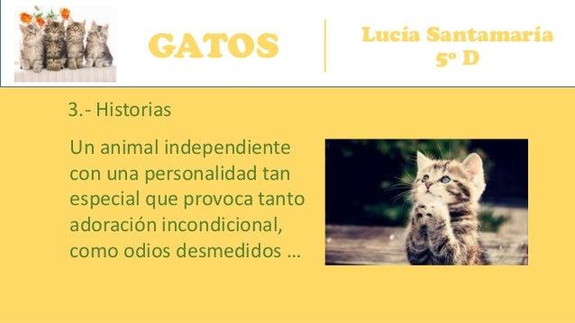 GATOS Lucía Santamaría 5º D 3.- Historias Un animal independiente con una personalidad tan especial que provoca tanto ador...