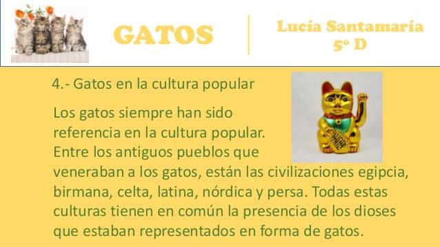GATOS Lucía Santamaría 5º D 4.- Gatos en la cultura popular Los gatos siempre han sido referencia en la cultura popular. E...