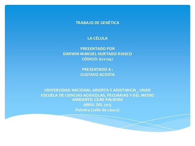 TRABAJO DE GENÉTICALA CÉLULAPRESENTADO PORDARWIN MANUEL HURTADO RIASCOCÓDIGO: 6221247PRESENTADO A :GUSTAVO ACOSTAUNIVERCID...