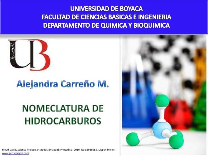 UNIVERSIDAD DE BOYACA<br />FACULTAD DE CIENCIAS BASICAS E INGENIERIA<br />DEPARTAMENTO DE QUIMICA Y BIOQUIMICA<br />Alejan...