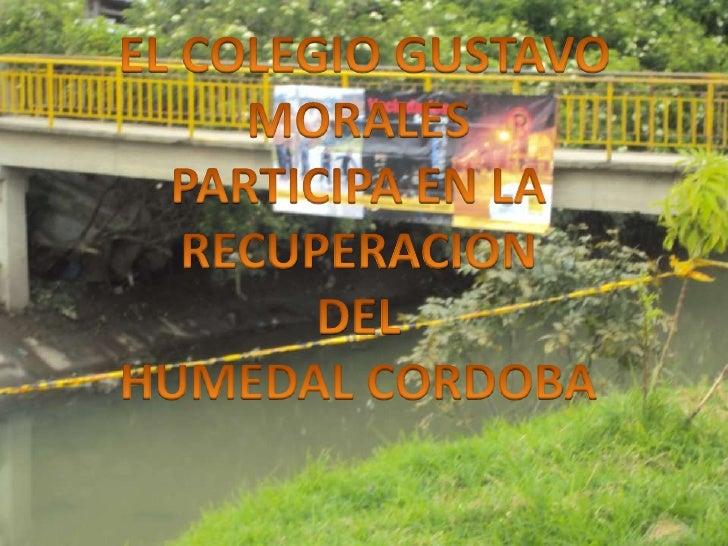 EL COLEGIO GUSTAVO MORALES <br />PARTICIPA EN LA RECUPERACION<br />DEL <br />HUMEDAL CORDOBA<br />