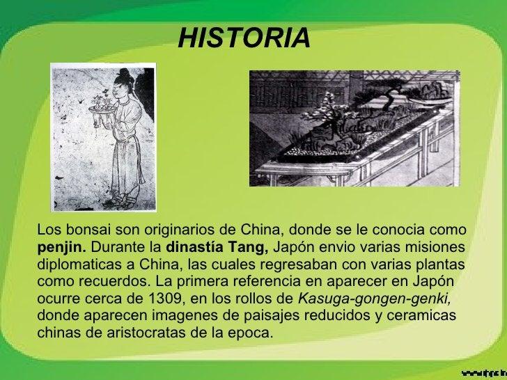HISTORIA Los bonsai son originarios de China, donde se le conocia como  penjin.  Durante la  dinastía Tang,  Japón envio  ...