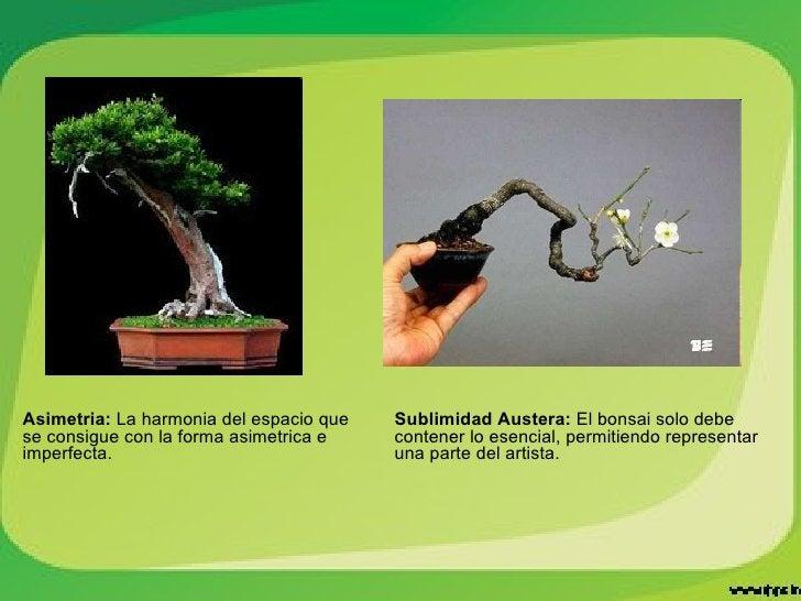 Asimetria:  La harmonia del espacio que se consigue con la forma asimetrica e imperfecta. Sublimidad Austera:  El bonsai s...