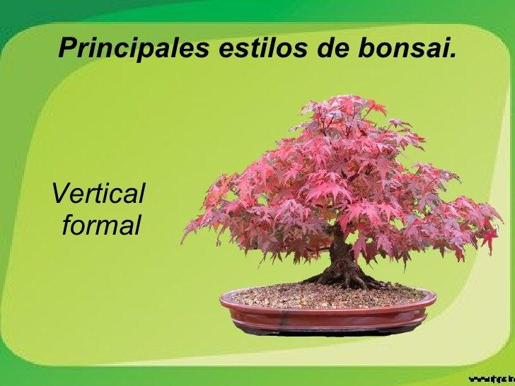 Principales estilos de bonsai. Vertical  formal