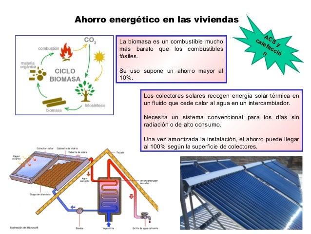 Ahorro energético en las viviendas La biomasa es un combustible mucho más barato que los combustibles fósiles. Su uso supo...