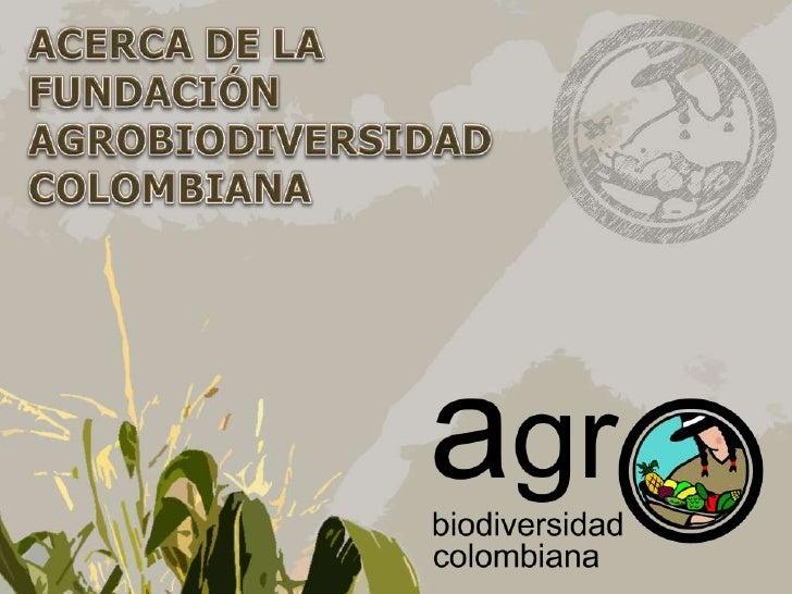 La Fundación Agro BiodiversidadColombiana es una organización nogubernamental (ONG) inscrita en laCámara de Comercio de Bo...