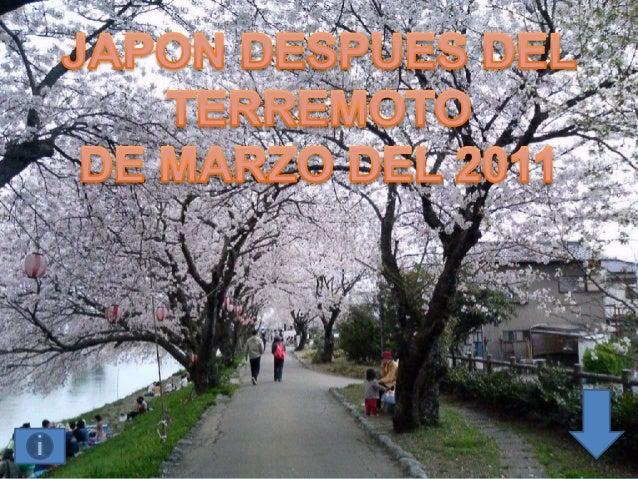 El 11 de marzo un terremoto de 9grados y el devastador tsunami que seprodujo como consecuencia dejaron almenos 13.843 muer...
