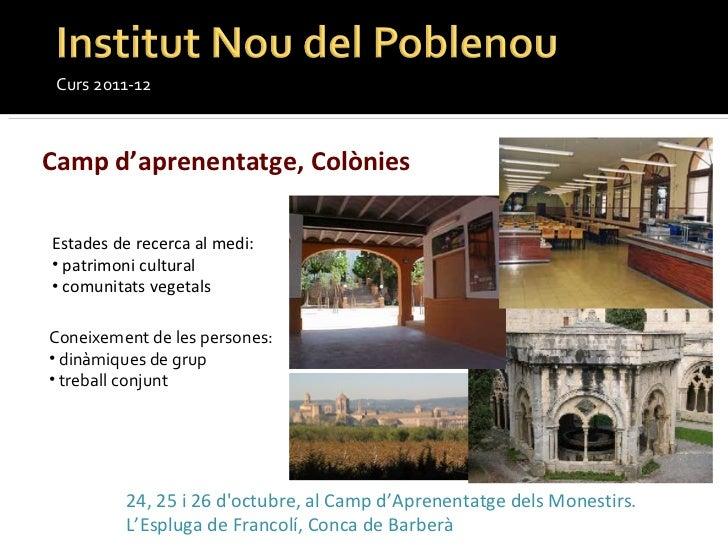 Curs 2011-12 Camp d'aprenentatge, Colònies  <ul><li>Estades de recerca al medi: </li></ul><ul><li>patrimoni cultural </li>...