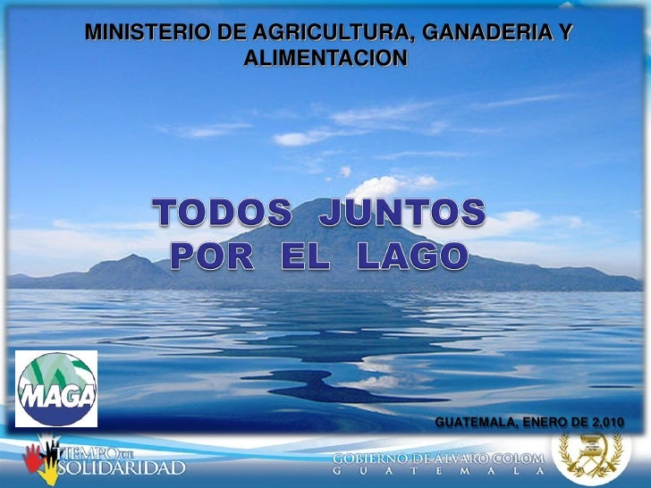 MINISTERIO DE AGRICULTURA, GANADERIA Y              ALIMENTACION                                GUATEMALA, ENERO DE 2,010