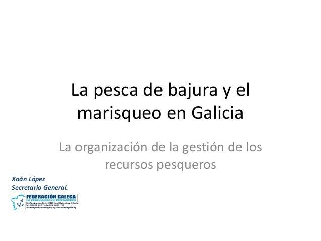 La pesca de bajura y el marisqueo en Galicia La organización de la gestión de los recursos pesqueros Xoán López Secretario...