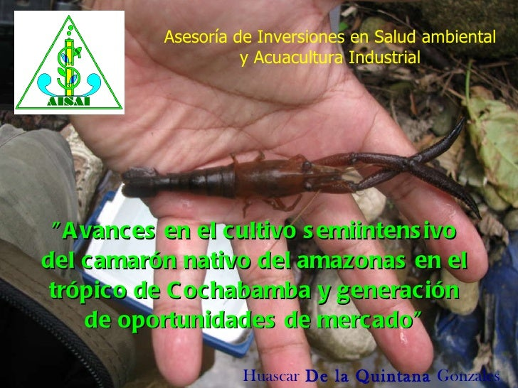 """""""Avances en el cultivo semiintensivo del camarón nativo del amazonasen el trópico de Cochabamba y generación de opor..."""