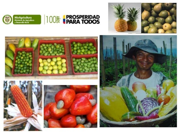 Políticas para el Desarrollo de la Extensión Rural en Colombia - DIDTyPS Villavicencio (Meta) 10 de abril de 2014