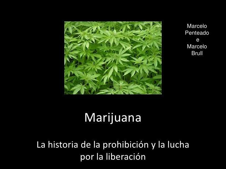 Marcelo Penteado<br /> e <br />Marcelo Brull<br />Marijuana<br />La historia de la prohibición y la lucha por la liberació...