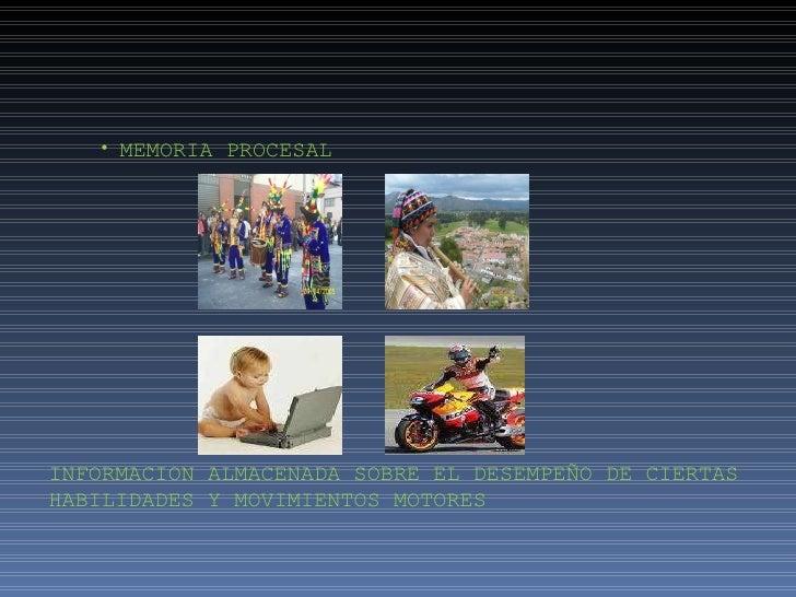 Presentación memoria Slide 3