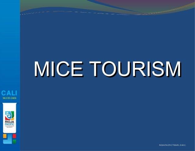 RIOJA PACIFIC TRAVEL D.M.C.CALIVALLE DEL CAUCAMICE TOURISMMICE TOURISM