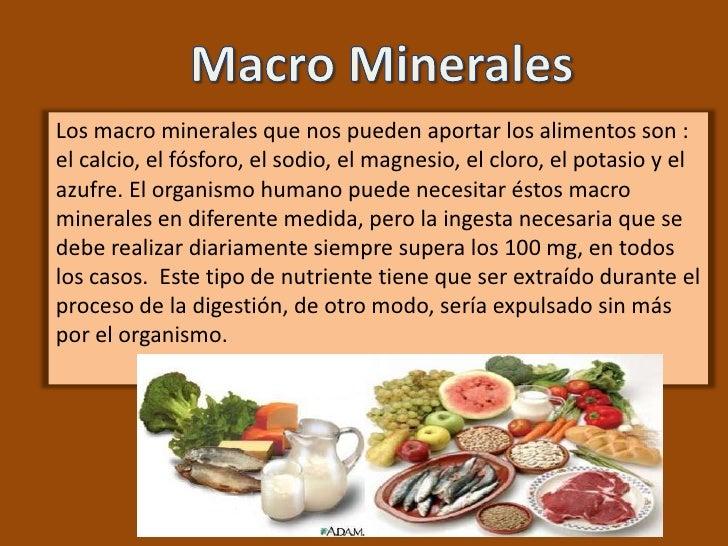 Los minerales - En que alimentos encontramos magnesio ...