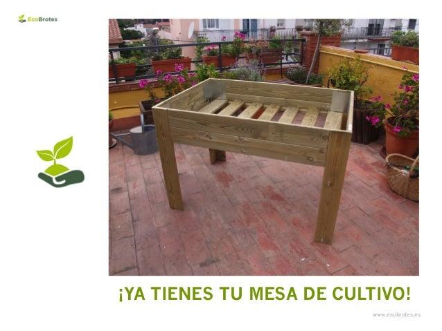 Creaci n de un huerto urbano montaje de una mesa de - Mesa de cultivo leroy ...