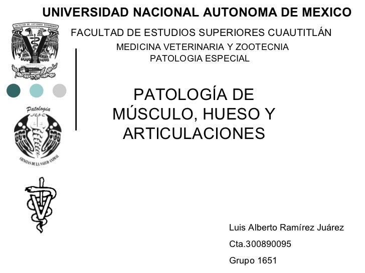 PATOLOGÍA DE MÚSCULO, HUESO Y ARTICULACIONES Luis Alberto Ramírez Juárez  Cta.300890095 Grupo 1651 UNIVERSIDAD NACIONAL AU...