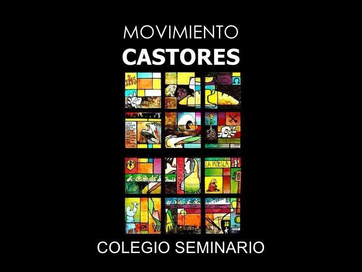 MOVIMIENTO CASTORES COLEGIO SEMINARIO