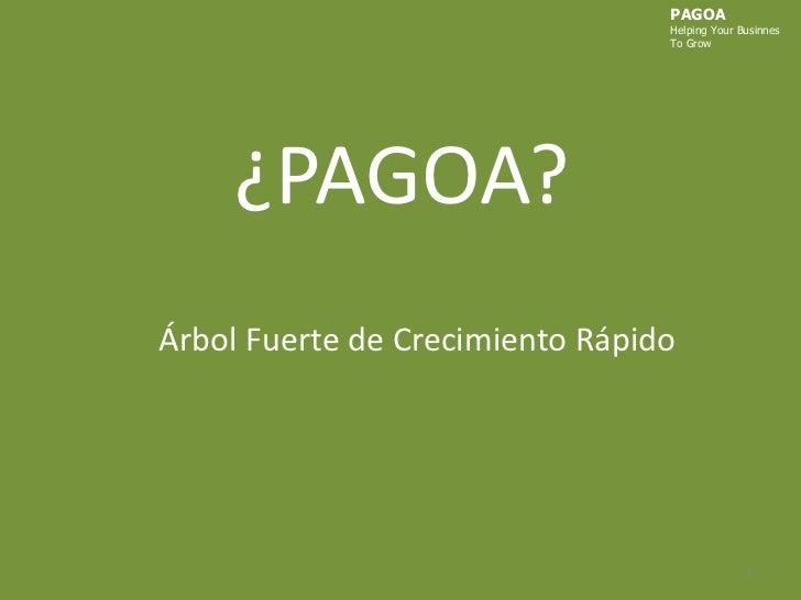 PAGOA<br />HelpingYourBusinnes<br />ToGrow<br />¿PAGOA?<br />Árbol Fuerte de Crecimiento Rápido<br />1<br />